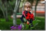 в цветах