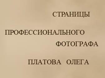 Платов Олег профессиональный фотограф