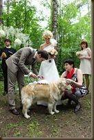 Помощник на свадьбе служу