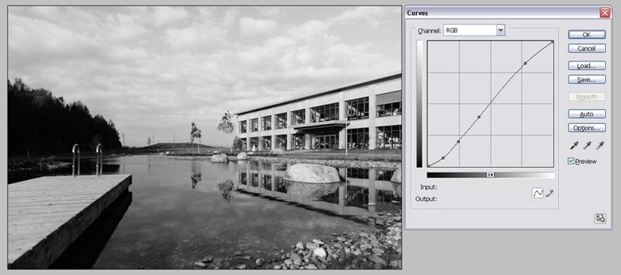 Черно белые фотографии TRI-X 400